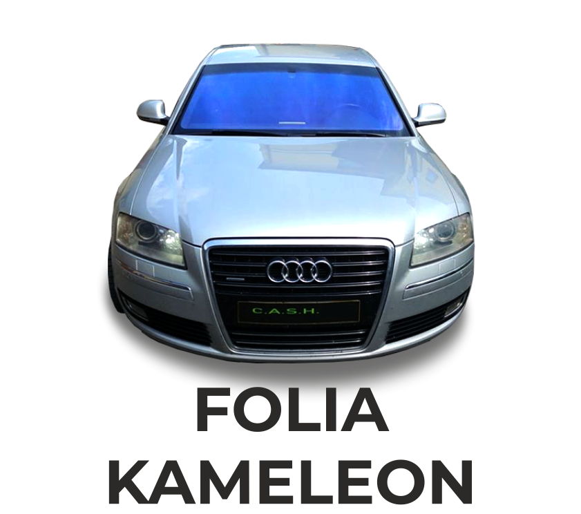 FOLIA KAMELEON